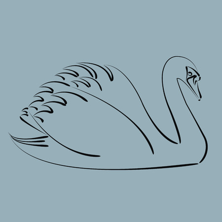 swan: Sketched black swan. Harmonic colors. Background can be easily removed. Design template for label, banner, postcard or logo. Vector. Illustration