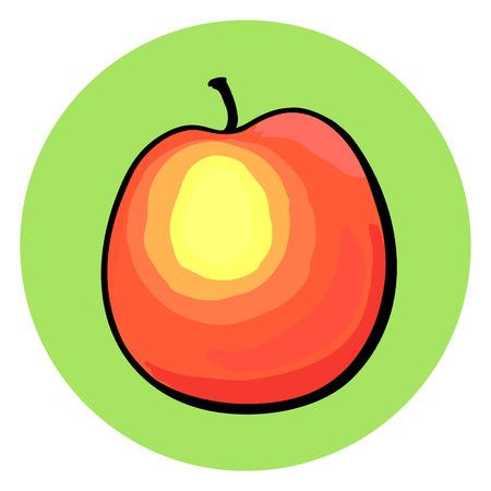 Mano melocotón dibujado en el fondo redondo de color verde. Foto de archivo - 51441927