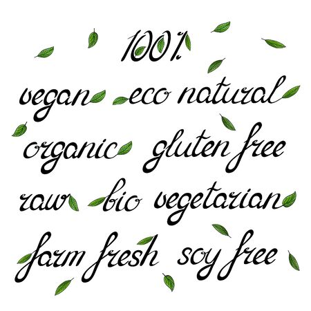 soy free: Handwritten words organic eco natural vegan raw bio vegetarian embellished with green leaves.