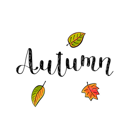 inspiring: Autumn. Brush hand lettering. Inspiring quote. Motivating modern calligraphy. Can be used for photo overlays, posters, holiday clothes, cards and more. Illustration