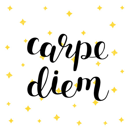 seize: Carpe diem. Seize the day. Brush hand lettering vector illustration. Inspiring quote. Motivating modern calligraphy. Can be used for photo overlays, posters, prints, home decor, cards and more.