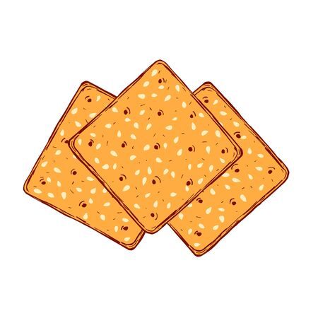 Hand drawn crackers with sesame seeds. Buscuit sketch drawing.