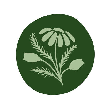 Vector illustration of a hand drawn chamomile in round frame.