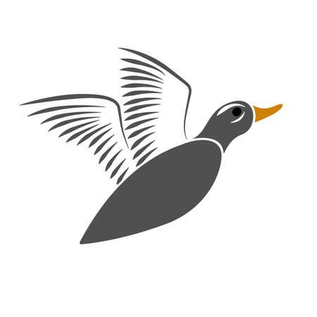 Flying wild duck design on white background.