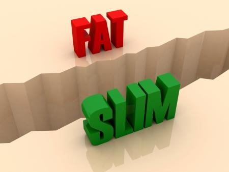 separation: Two words FAT and SLIM split on sides, separation crack. Concept 3D illustration. Stock Photo