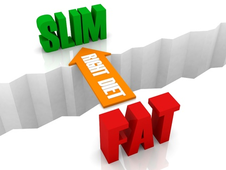Right diet is the bridge from FAT to SLIM. Concept 3D illustration. illustration