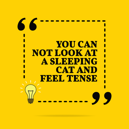 Inspirational motivational quote. You can not look at a sleeping cat and feel tense. Black text over yellow background Stock Illustratie