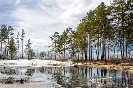 Spring landscape on the Siberian river. The river Ob, Novosibirsk oblast, Siberia, Russia
