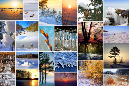 Winter in nature, Siberia, Novosibirsk oblast, Russia. A collage of photos Stock Photo