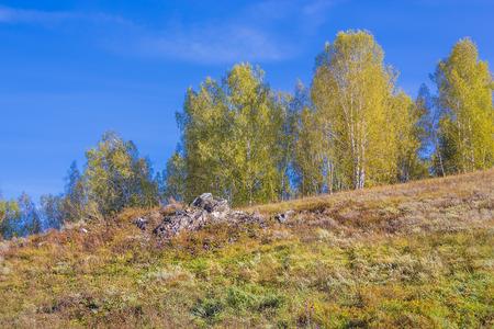 manifestations: Stony steppe natural monument of regional significance. North of Vostochnoe the outskirts of the village Novososedovo, Novosibirsk oblast, Siberia, Russia