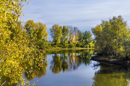 tributary: Autumn landscape on the Siberian river. The Chaus river ( a tributary of the Ob river ),Kolyvan district, Novosibirsk oblast, Siberia, Russia