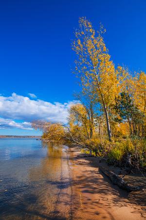 City Park Berd spit. Colorful autumn trees on coast of Ob in the Novosibirsk reservoir. Berdsk, Novosibirsk oblast, Siberia, Russia