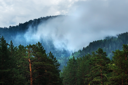 Fog formed on the mountain tops covered with dark coniferous taiga. Altai mountains, Katun river region, southern Siberia, Russia Stock fotó