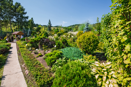 Altai village, Gorny Altai, South Siberia, Russia-August 25, 2018: territory of the arboretum Altai kholmogorie, planting of ornamental plants and shrubs around garden paths