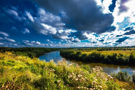 Inya river with grasses in summer. District of the city of Toguchin, Novosibirsk oblast, Western Siberia, Russia