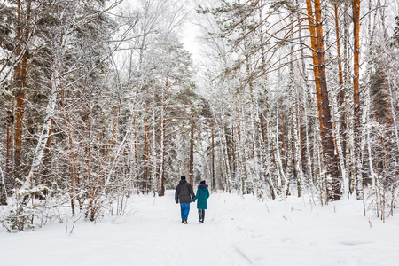 A young couple walks through the snow-covered forest. Novosibirsk region, Western Siberia, Russia