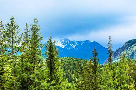 View of the mountain taiga and snow-covered North Chui mountain range. Altai Republic, South Siberia, Russia Stock Photo