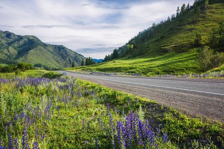 Altai Republic, southern Siberia, Russia - July 13, 2019: Federal highway - Chui tract, in the Altai mountains Stock Photo - 128255111