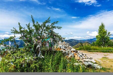 Ongudai district, Altai Republic, southern Siberia, Russia - July 13, 2019:Specially protected natural object - Chike-Taman mountain pass. Tree with tied ritual ribbons