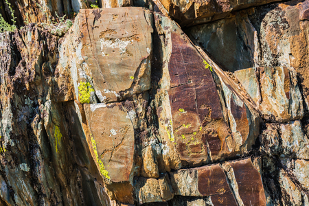 Petroglyph complex kalbak - Tash (ritual sanctuary), Ongudai district, Altai Republic, Russia - July 15, 2019: rock paintings depicting animals