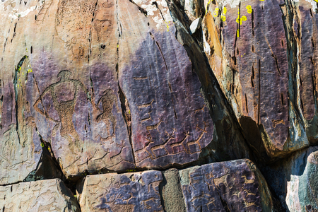 Petroglyph complex kalbak - Tash (ritual sanctuary), Ongudai district, Altai Republic, Russia - July 15, 2019: rock paintings depicting animals