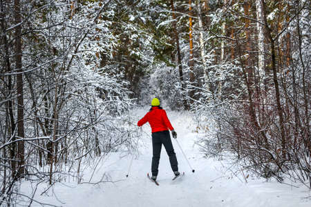 A skier in a red jacket on a ski run in a snow-covered forest. Western Siberia, Russia