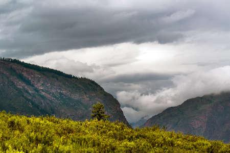 Chulyshman highlands at the Chulyshman river canyon. Ulagansky district, Altai Republic, Russia Archivio Fotografico
