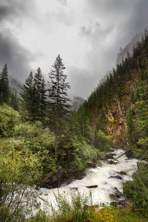 Mountain river Chibitka surrounded by coniferous forest and mountains. Russia, southern Siberia, Altai Republic, Ulagansky distric Archivio Fotografico