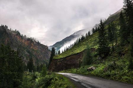 Mountain landscapes with coniferous taiga near the village of Aktash. Russia, southern Siberia, Altai Republic, Ulagansky district