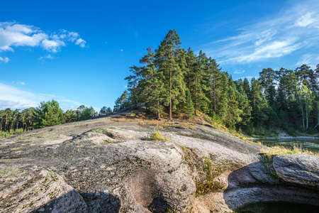 Pine forest on a stone ledge near the river. Turochaksky district, Altai Republic, South of Western Siberia, Russia 版權商用圖片 - 158583373