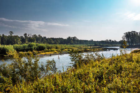 Summer landscape with a river. Berd River, Iskitimsky District, Novosibirsk Oblast, Western Siberia, Russia 스톡 콘텐츠