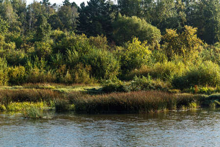 Summer landscape with a river. Berd River, Iskitimsky District, Novosibirsk Oblast, Western Siberia, Russia 版權商用圖片