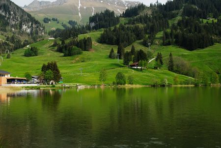 This is a nice place to visit this place near to Fribourg in Switzerland. From this place you can walk to see the lake that have many birds are flying.