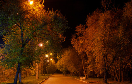 Along in the park, in the light of the street lamps.