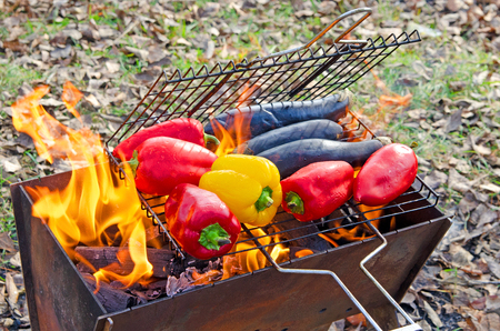 Vegetables (bell pepper and eggplants) are grilled on an open fire. Camping.
