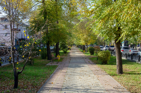 Autumn, pedestrian alley (sidewalk) with benches in the city, not far from the road. Russia Banco de Imagens