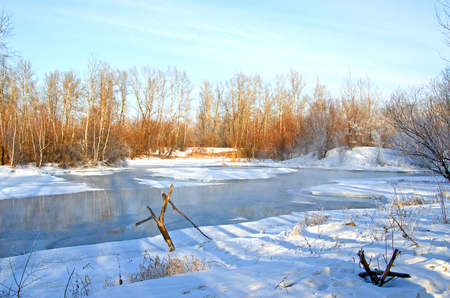 Non-freezing winter lake. Bare winter trees near the pond above which steam rises. Winter. Russia. Abakan
