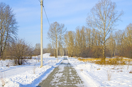 Pedestrian road through the winter snow-covered park.