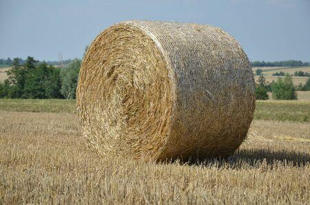 straw: Straw