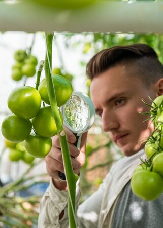 Image of young botanist with magnifying glass in greenhouse on summer day Imagens