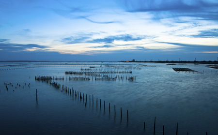 Serene and beautiful sunsets oyster fields