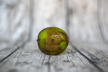 hideous: rotten green lemon put on wooden table