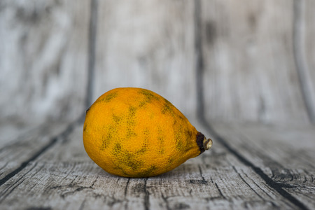 spoilage: rotten yellow lemon put on wooden table