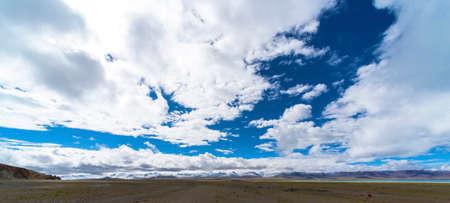 grassland under blue sky and white clouds Standard-Bild