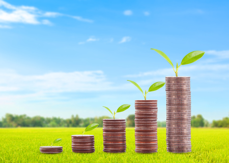 Coins money and growing plant on row of coin money and field grass background of finance and banking. Investment and saving concept Stock Photo