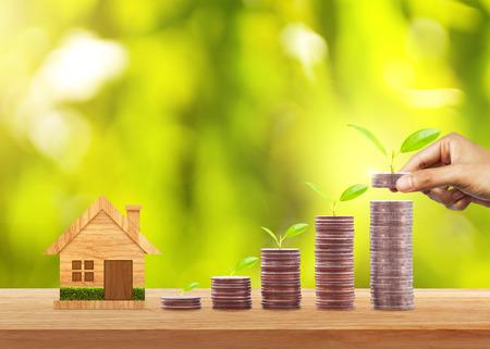 Passi mettere le monete dei soldi alla pila di monete e la pianta crescente sulla fila dei soldi della moneta per finanza e contare. Investimento e concetto di risparmio Archivio Fotografico