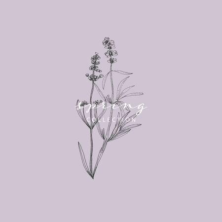 Elegant social media trendy feminine dusty lavender floral elements and templates