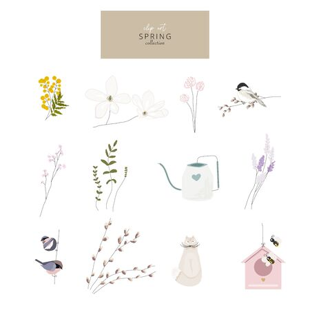 cute spring clip art little elements with hand drawn textures