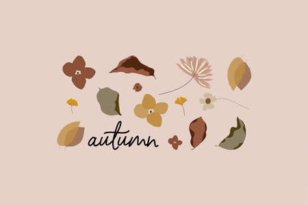 Botanical autumn illustration set