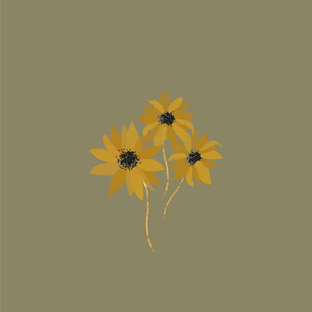Floral abstract stylized sunflower flower